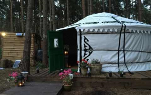 Beautiful Woodland Yurt in North Norfolk
