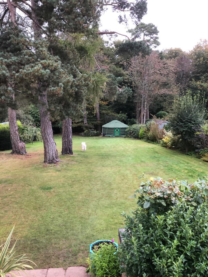 green yurt in garden